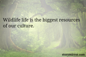 Wildlife life is the biggest resources of our culture.