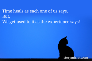 Time heals as each one of us says, But, We get used to it as the experience says!