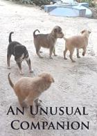An Unusual Companion