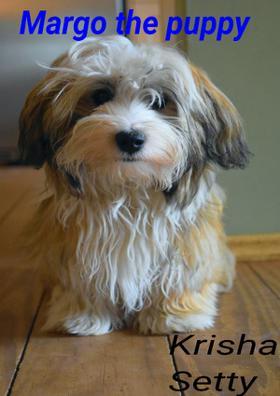 Margo, The Puppy