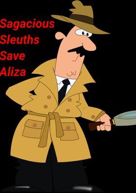 Sagacious Sleuths Save Aliza