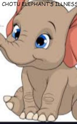 Chotu Elephant's Illness