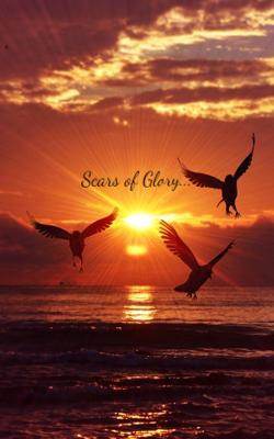 Scars of Glory...