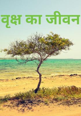 वृक्ष का जीवन