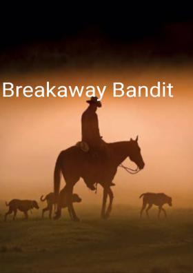 Breakaway Bandit