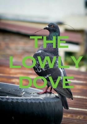 The Lowly Dove