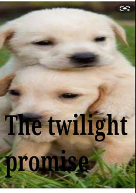 The Twilight Promise