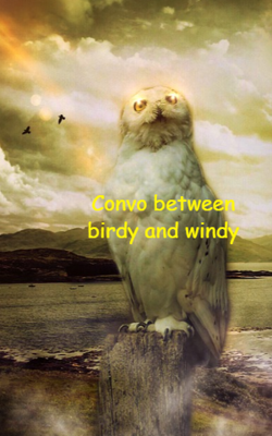Convo Between Birdy And Windy