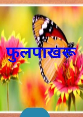 फुलपाखरू
