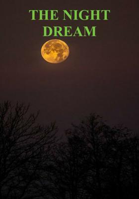 The Night Dream