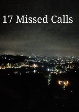Seventeen  Missed Calls
