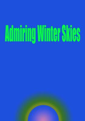 Admiring Winter Skies