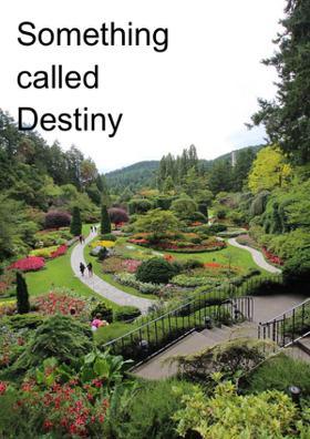 Something Called Destiny