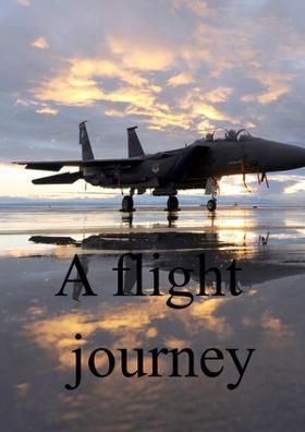 A Flight Journey