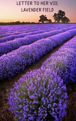 LETTER TO HER VIII; LAVENDER FIELD