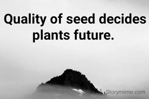 Quality of seed decides plants future.