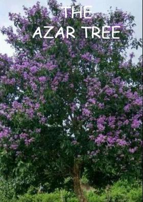 The Azar Tree