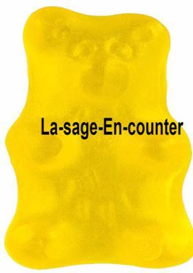 The Las-age-En-counter