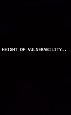 Height Of Vulnerability...