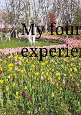 My Fourteen Day of Experience