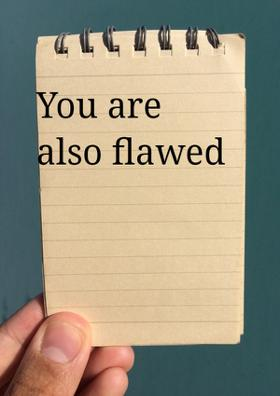 You Are Also Flawed
