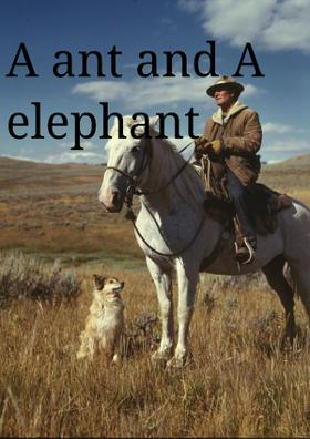 An And And An Elephant