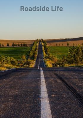 Roadside Life