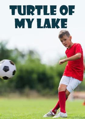 Turtle Of My Lake