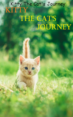 Kitty The Cat's Journey