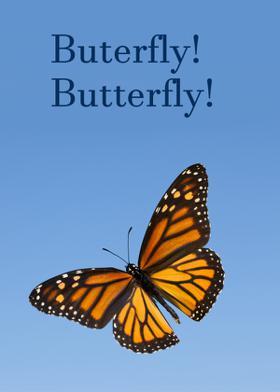 Buterfly! Butterfly!