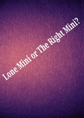 Lone Mini Or The Right Mini?