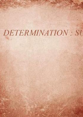 Determination: Success Step
