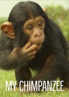 My Chimpanzee