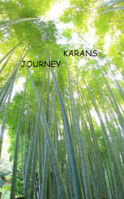 Karan's Journey