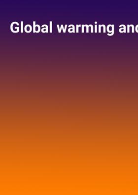 Global warming and politics