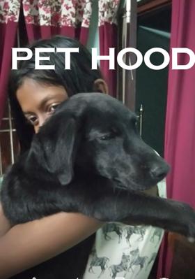 Pethood