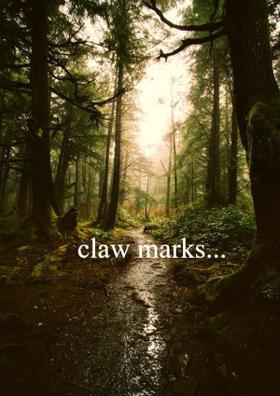 Claw Marks...