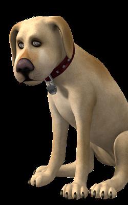 कुत्ते की तेरहवीं
