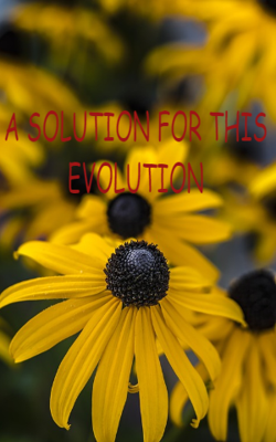 A Solution for this Evolution