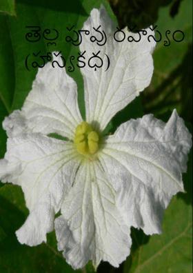 తెల్ల పూవు రహస్యం (హాస్యకధ)