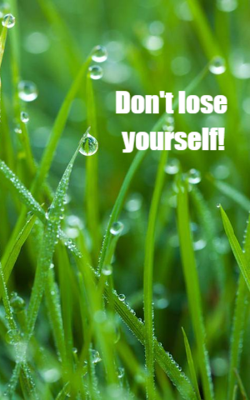 Don't lose yourself!