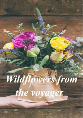 Wild Flowers From The Voyager
