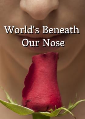 World's Beneath Our Nose