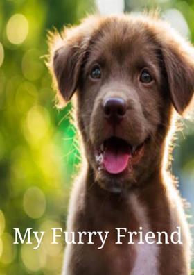 My Furry Friend