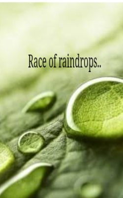 Race of Raindrops..