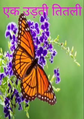 एक उड़ती तितली