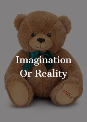 Imagination Or Reality