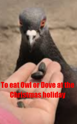 To Eat Owl Or Dove At The Christmas Holiday