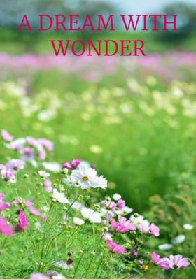A Dream With Wonder