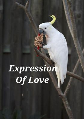Expression Of Love